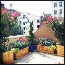 My Home Design Nyc Amber Freda Home U0026 Garden Design Brownstoner