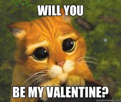 Cute Valentine Meme - will you be my valentine funny valentine s day info