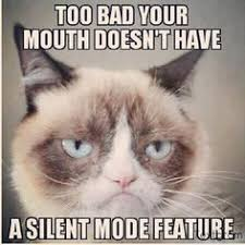 Make Your Own Cat Meme - make your own grumpy cat meme 28 images grumpy cat meme