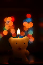 Free Images Light Bokeh Night Flower Love Red Color