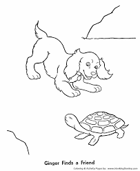 pet turtle coloring pages free printable pet coloring pages