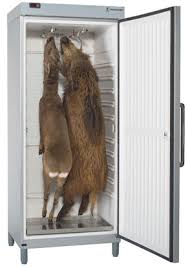 chambre froide pour gibier animkap les armoires à gibier chassons