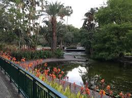 Brisbane City Botanic Gardens by City Botanic Gardens Brisbane Adamgerace Com