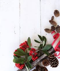 free stock photos of christmas decorations pexels