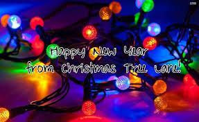 christmas tree lane alameda home facebook