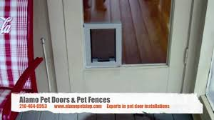 Pet Door For Patio Door by Interior Pet Doors Gallery Glass Door Interior Doors U0026 Patio Doors