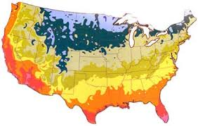 Gardening Zones Canada - gardening regions canada container gardening ideas