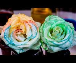 tie dye roses how to tie dye flowers with osmosis 5 steps with pictures