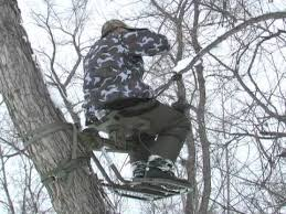 swivel limb treestand