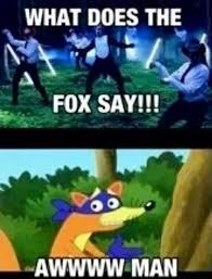 Swiper The Fox Meme - swiper no swiping funny pinterest memes random and stuffing