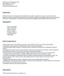controller resume exle 18 free insurance claim controller resume sles sle resumes