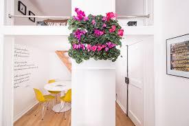 vertical goodness 10 diy living walls kits for green living