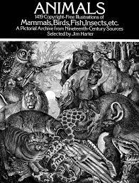 animals 1 419 copyright free illustrations of mammals birds