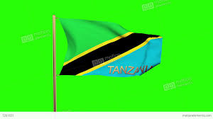 Flag Yellow Sun Tanzania Flag With Title Waving In The Wind Looping Sun Rises