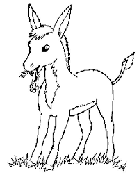 244 coloring pages images coloring books