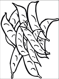 beans coloring pages with bean coloring page omeletta me