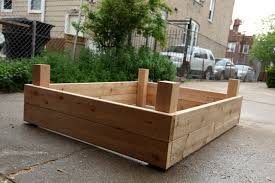 garden design garden design with insect damage and control growin garden design with diy raised garden beds cucina kristina with when to plant tulip bulbs from