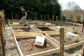 making raised beds for our vegetable garden the modern gardener