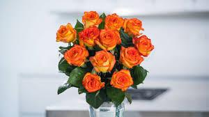 orange roses yellow orange roses in the air