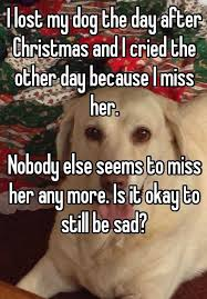 Day After Christmas Meme - i lost my dog the day after christmas and i cried the other day