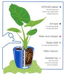 self watering planters how they work self watering pots india