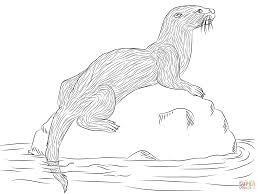 best otter coloring pages 45 on free colouring pages with otter