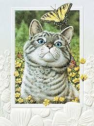 pumpernickel press wildlife cards baby cheetah embossed blank greeting cards set of 6