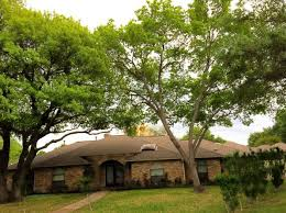 dallas tx for sale by owner fsbo 132 homes zillow