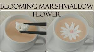 diy blooming marshmallow flower i aufblühende marshmallow blumen