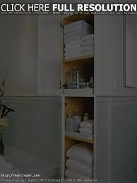 bath closet houzz inside the elegant and attractive bathroom