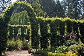 Washington State Botanical Gardens Heronswood Gardens In Washington State Worth A Visit If I M