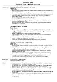 managment resume agency marketing manager resume samples velvet jobs
