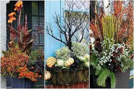container gardening 15 container gardens perfect for the holidays