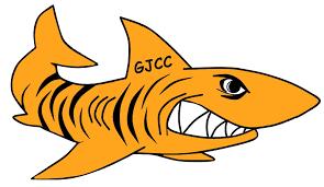 swim teams u2013 gordon jewish community center
