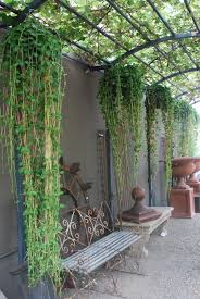 great use of vertical space and appropriate plants garden