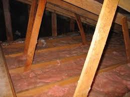 attic fan or insulation treehugger