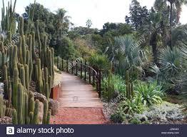 royal botanic gardens victoria melbourne victoria australia on