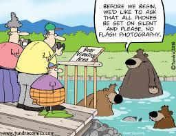 thanksgiving cartoon jokes home