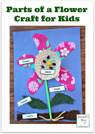 parts of a flower craft for kids pinterest png