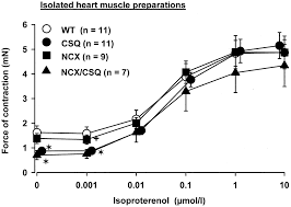 functional properties of transgenic mouse hearts overexpressing