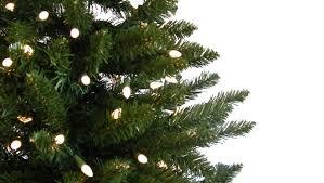 real christmas trees u2013 happy holidays