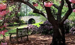 Georgia Botanical Garden by Creative Of Botanical Gardens Columbus Ga The Most 8 Beautiful