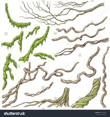 hand drawn branches leaves tropical plants stock vector 661597300