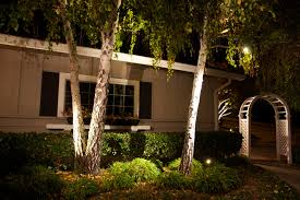 exterior tree illumination diode led