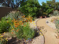 phoenix landscape design ideas pictures remodel and decor under