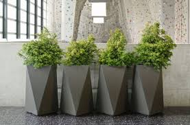 plant large planter boxes magnificent planters and bill o39brien