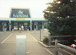 Ohio world traveller images 78 best sea world ohio images aurora sea world and jpg