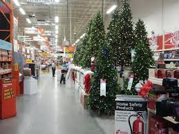 does home depot sell trees fresh live real