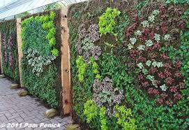 Urban Wall Garden - visit to biltmore house walled garden u0026 conservatory diggingdigging
