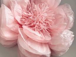 paper flower last chance tissue paper flower sola wood